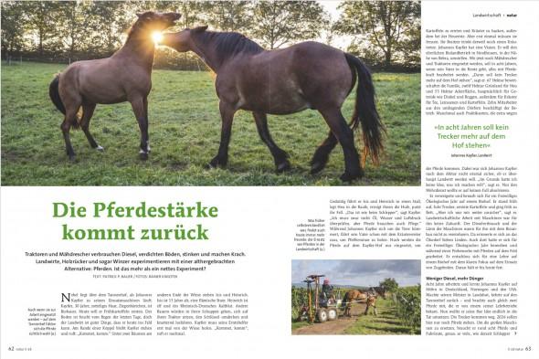 rk_Pferde_Teaser VÖ